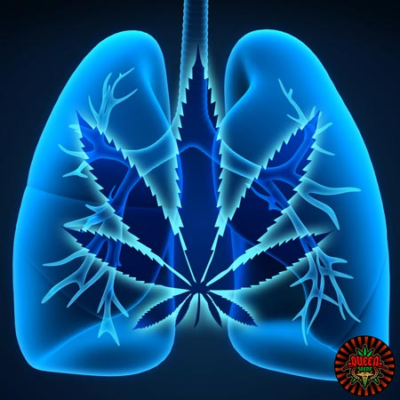 asthme cannabis medical
