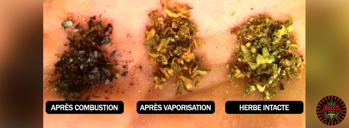 consumme vaporisateur cannabis